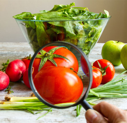 Food & Food Supplements | Global NHP Consulting |